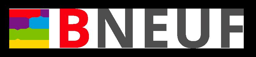 logo bneuf.a208db50